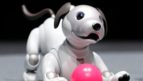 aibo gos robot petits enginyers