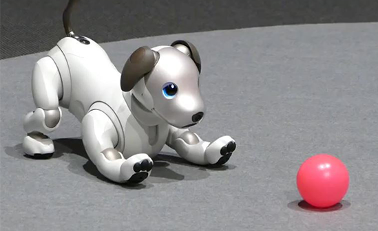 petits enginyers aibo gos robot